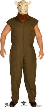 Erick Rowan - WWE Lifesize Standup