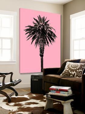 Palm Tree 1996 (Pink) by Erik Asla