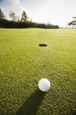 Usa, California, Mission Viejo, Golf Ball on Grass by Erik Isakson