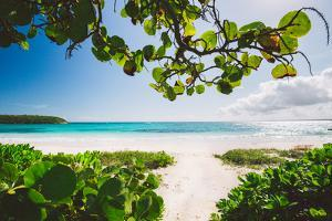 A White Sand Beach On The Island Of Eleuthera, The Bahamas by Erik Kruthoff