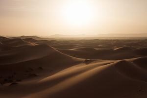 Sunset over the Sand Dunes of Morocco. Berber Camel Boy in the Sahara, Morocco by Erika Skogg
