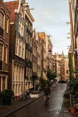 Amsterdam Road I by Erin Berzel