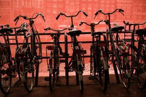 Bicycles at Centraal Station II by Erin Berzel