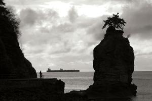 Biking on the Coast by Erin Berzel