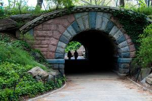 Bridge in Central Park by Erin Berzel