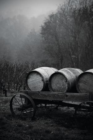 BW Oregon Wine Country II