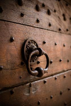French Door Knocker III by Erin Berzel