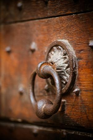 French Door Knocker IV By Erin Berzel