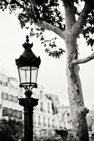 Parisian Lightposts BW II by Erin Berzel