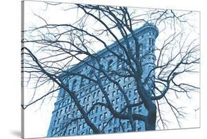 Blue Flatiron by Erin Clark