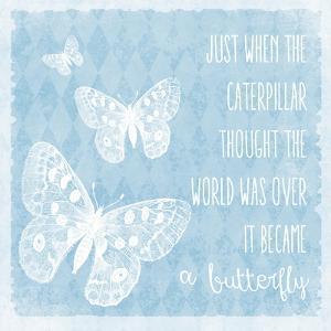 Butterflies by Erin Clark