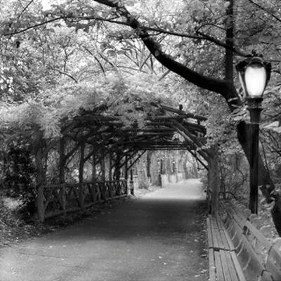 Central Park Pergola by Erin Clark