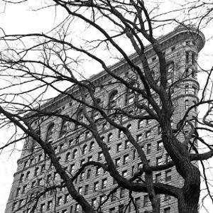 Flatiron with Tree (detail) by Erin Clark