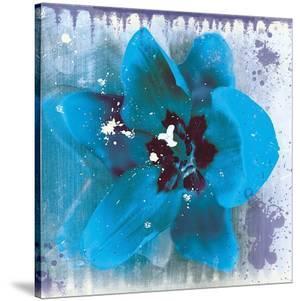 Tulip Fresco (blue) by Erin Clark