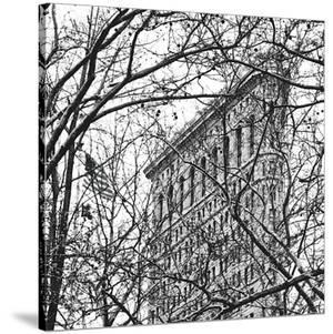 Veiled Flatiron Building (b/w) (detail) by Erin Clark