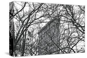 Veiled Flatiron Building by Erin Clark