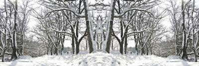 Winter Archway by Erin Clark