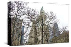 Woolworth Building from City Hall Park by Erin Clark