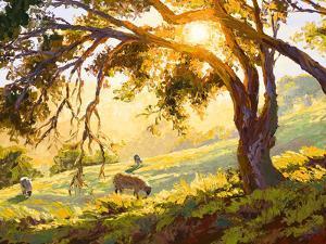 Restful Radiance by Erin Dertner