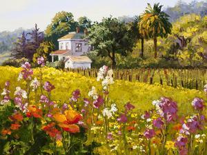 Symphony of Spring by Erin Dertner