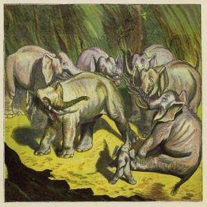 The Elephant That Lost its Tail by Ernest Henry Griset