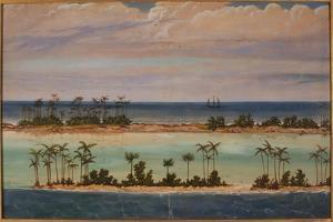 Triptych of an Atoll, 1871 by Ernest Henry Griset