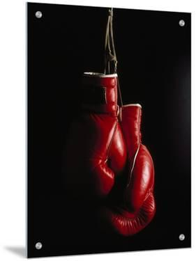 Hanging Boxing Gloves by Ernie Friedlander
