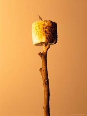 Roasted Marshmallow on a Stick by Ernie Friedlander