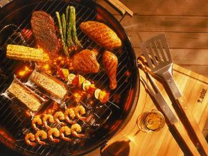 Vegetables, Fish, Poultry, and Red Meat on a Grill by Ernie Friedlander