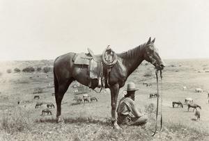 Texas: Cowboy, c1910 by Erwin Evans Smith