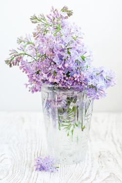 Bouquet of a Lilac by Es75