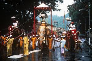 Esala Perahera Festival, Kandy, Sri Lanka