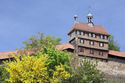 https://imgc.allpostersimages.com/img/posters/esslingen-castle-esslingen-esslingen-am-neckar-baden-wurttemberg-germany_u-L-PWFMT60.jpg?p=0