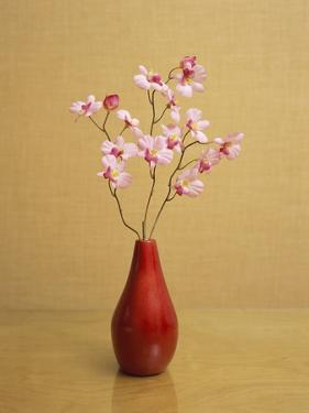 Orchid Flower in a Vase by Estelle Klawitter