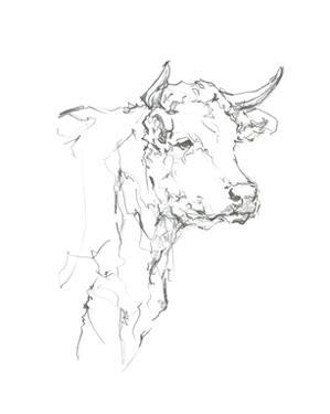 Bovine Quick Study I by Ethan Harper