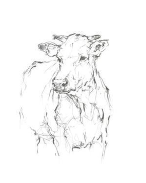 Bovine Quick Study II by Ethan Harper