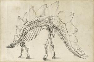 Dinosaur Study III by Ethan Harper