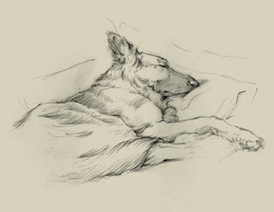 Dog Days IV by Ethan Harper
