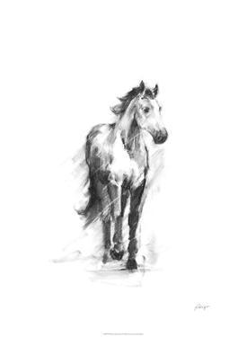 Dynamic Equestrian II by Ethan Harper