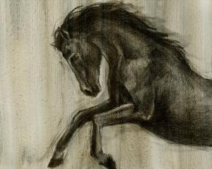 Dynamic Stallion II by Ethan Harper