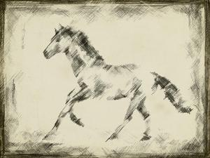 Equine Study II by Ethan Harper