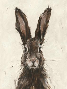 European Hare I by Ethan Harper