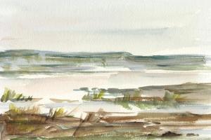 Overcast Wetland II by Ethan Harper