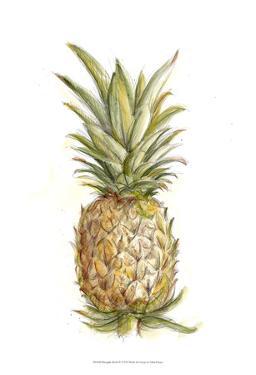Pineapple Sketch II by Ethan Harper