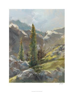 Rocky Hillside I by Ethan Harper