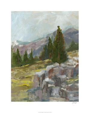 Rocky Hillside II by Ethan Harper