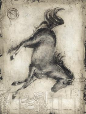 Roman Horse I by Ethan Harper