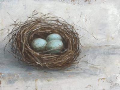Rustic Bird Nest I by Ethan Harper