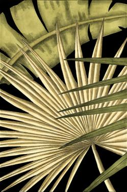 Rustic Tropical Leaves I by Ethan Harper