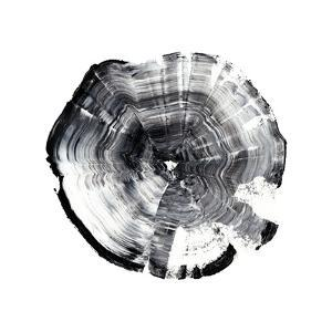 Tree Ring Abstract I by Ethan Harper